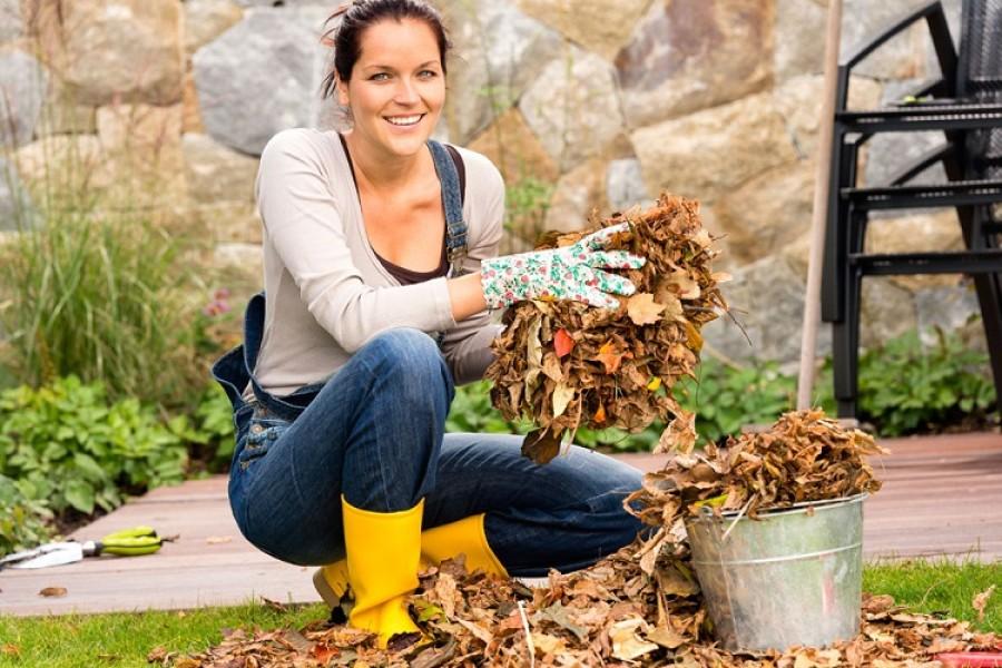 Itt van az ősz, itt van újra – Aktuális teendők a kiskertekben