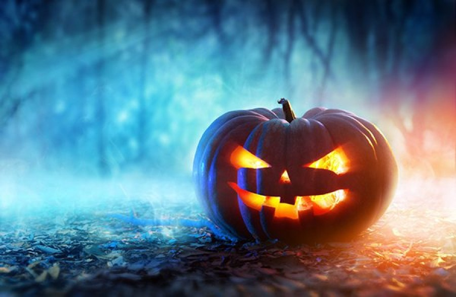 A NÉBIH figylemeztet: A Halloween tökök mérgezőek lehetnek!
