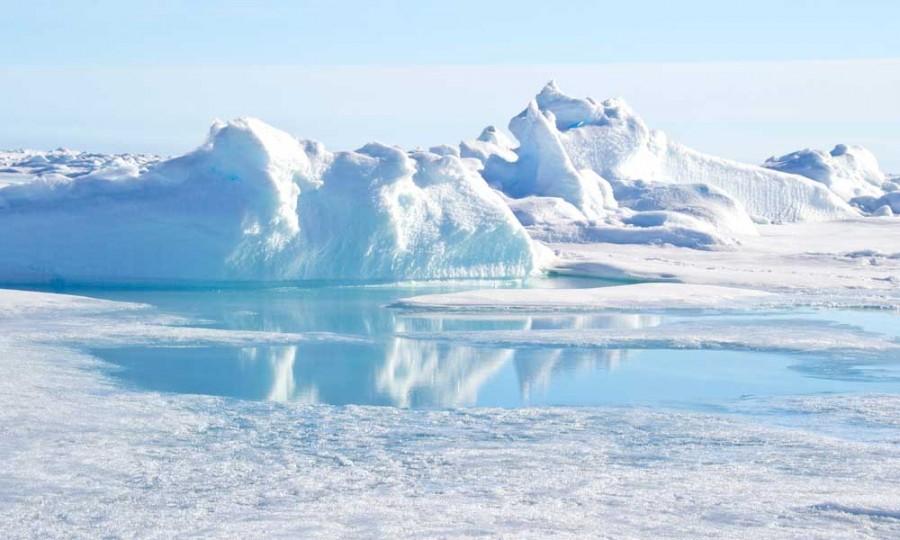 Vészesen terjednek a szuperbaktériumok! Antibiotikum-rezisztens géneket találtak az Északi-sarkvidéken is