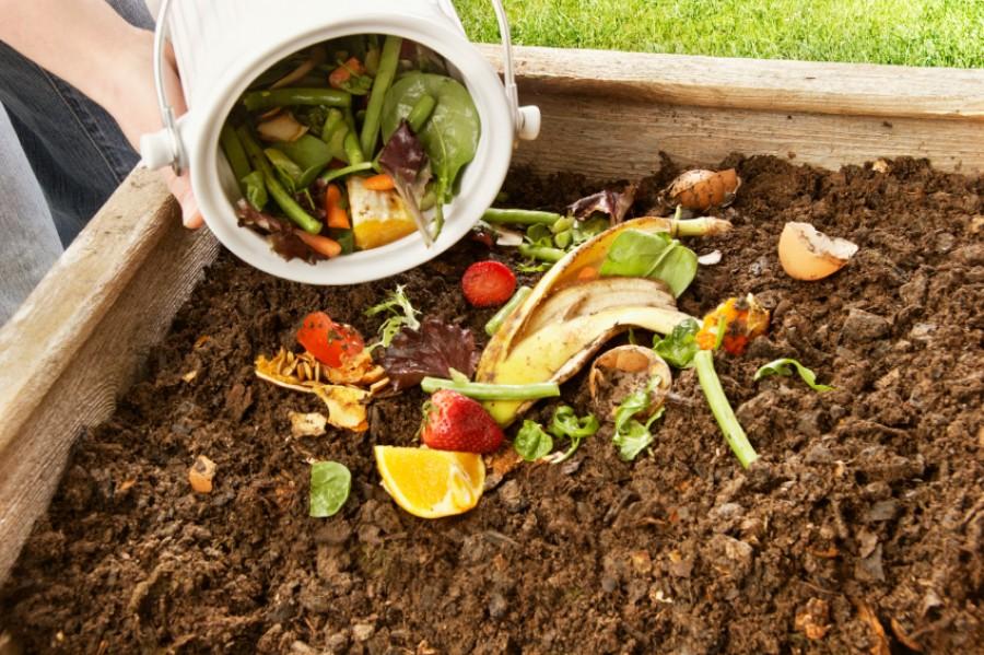 Mi kerüljön a komposztba és mi ne?