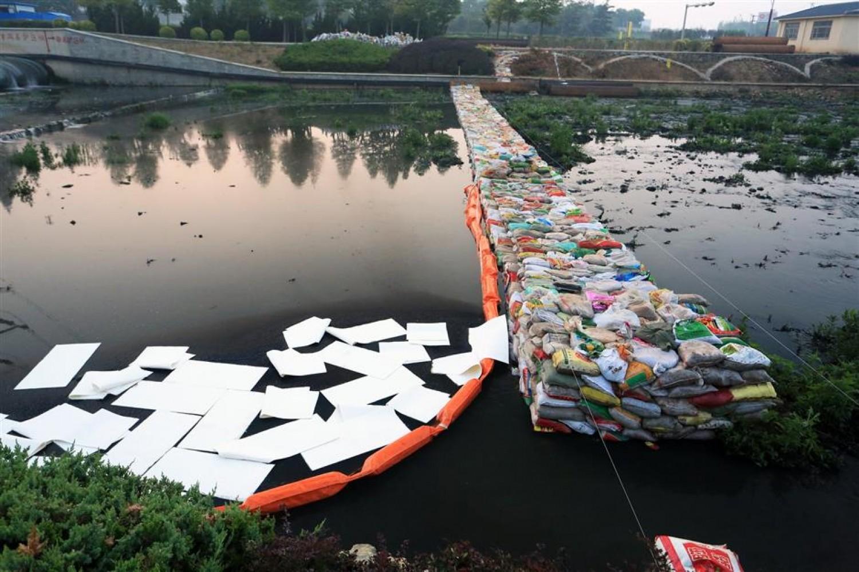 Forradalmi módszer az olajszennyeződés ellen!