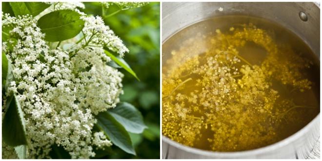 Bodzaméz recept - amihez nem kellenek méhek!