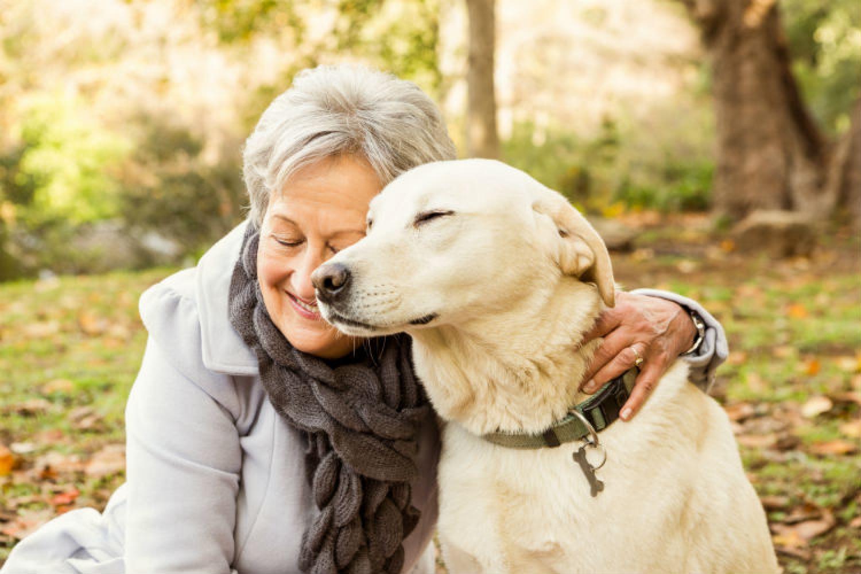 A génjeidtől is függ, hogy kutyatulajdonos leszel-e