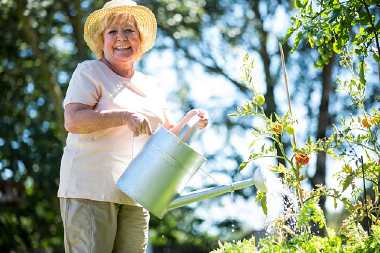 Így öntözd a növényeidet a forró napokon