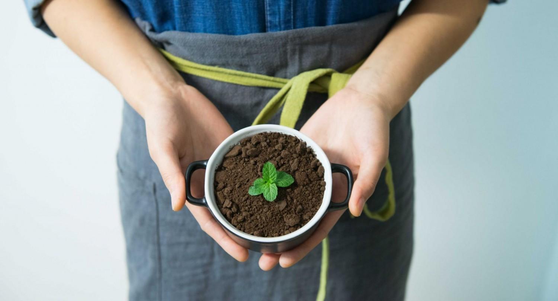 Amit ma megfogadhatsz, ne halaszd holnapra! - Tedd meg zöld vállalásod a dm kampányában!