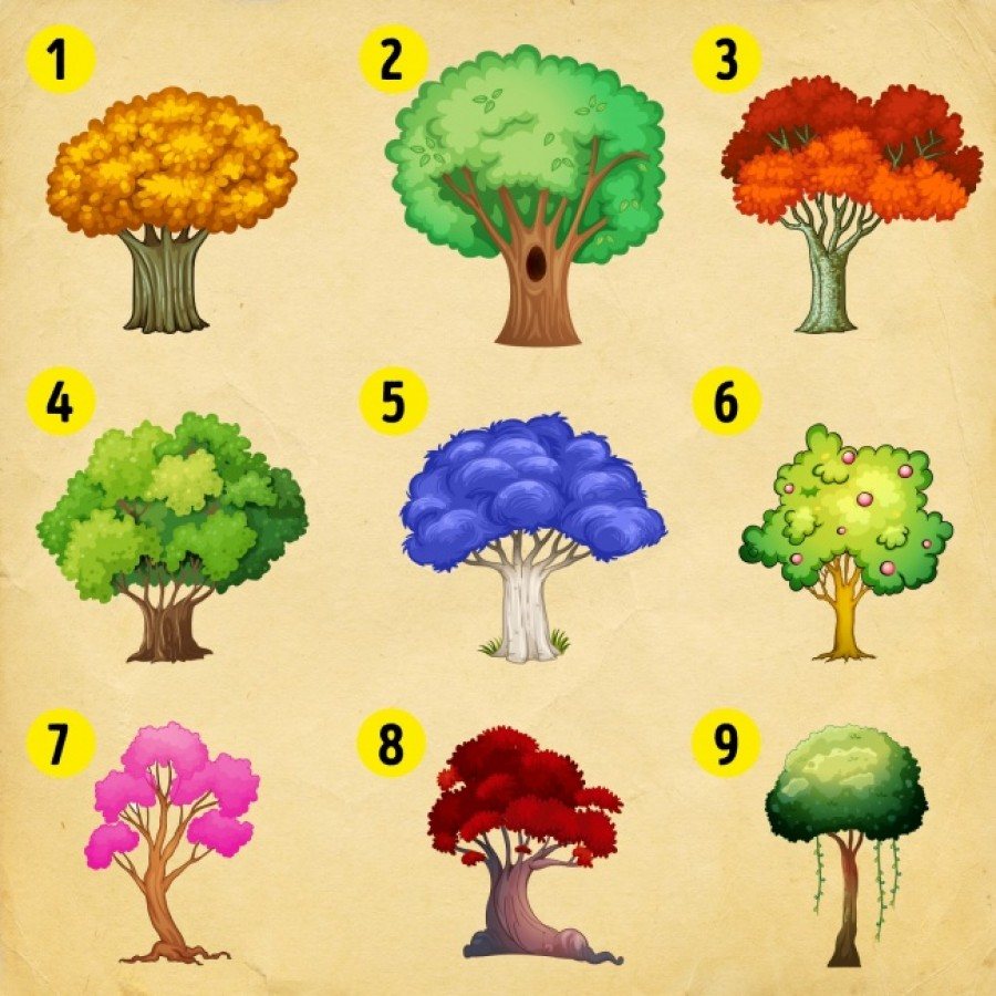Válassz egy fát és tudd meg, mi vár rád az újévben!
