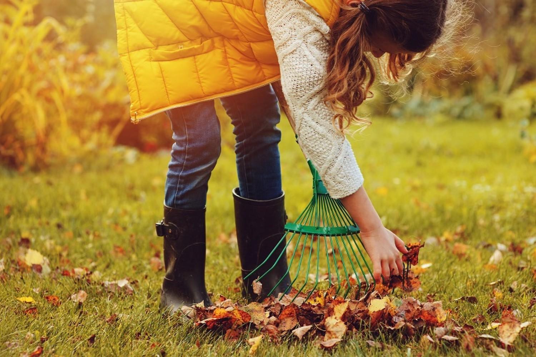 Nagytakarítás a kertben, avagy hogyan készüljön fel a télre