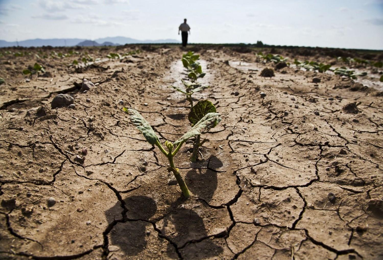 Ilyen kihívások várnak a mezőgazdaságra a következő 10 évben