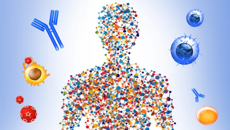 Immunitás – természetes immunerősítés 1. rész