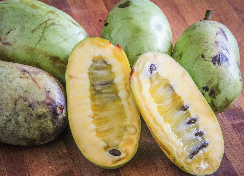 Ez a különlegesen finom gyümölcs nálunk is megterem!