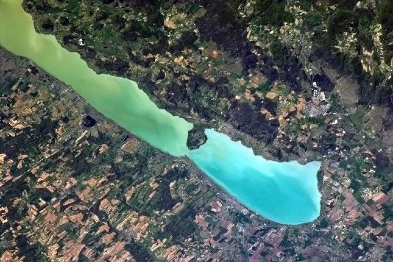 Napokon belül zöld algacsúcs várható a Balatonban