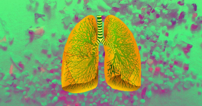 Már az emberi szervekben is nagy mennyiségű mikroműanyag van