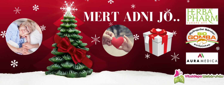 """""""MERT ADNI JÓ..."""" karácsonyi jótékonysági akció"""