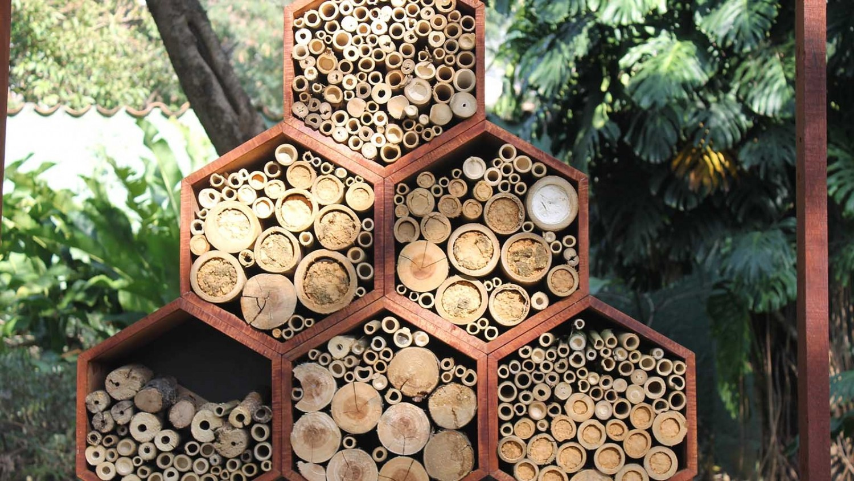 Méhecske hotelekkel védhetjük a beporzó rovarokat