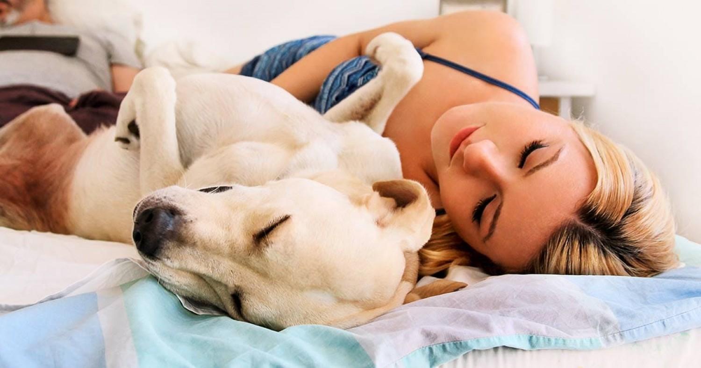 A nők jobban alszanak egy kutya mellett, mint egy férfi mellett