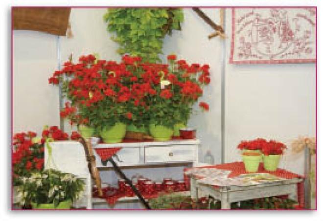 Kihagyhatatlan látványosságok és érdekességek  az ősz legnagyobb kertészeti szakkiállításán és vásárán