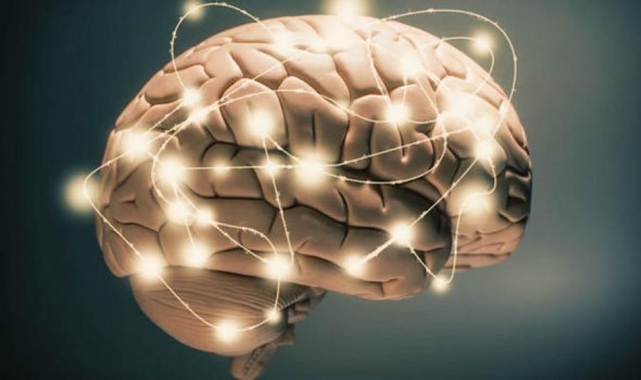 Az agy  tíz  legtitkosabb rejtélye - felesleges vagy titokzatos funkciók szabályozzák életünket!