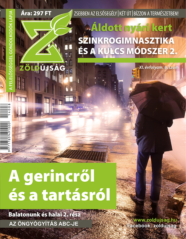 zold_borito_11_08-rgb