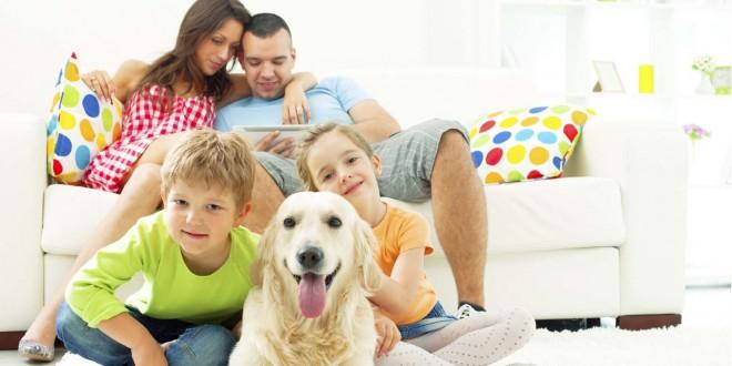 Kutya a családban