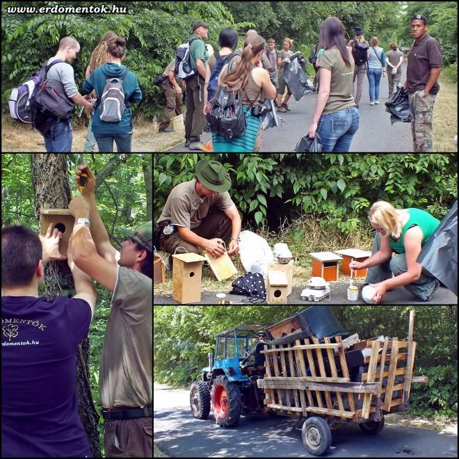 Önkéntesek az erdőkért