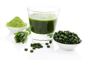 spirulina-alga