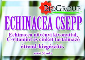 echinacea-csepp-ok