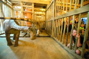 valahogy így különítették el az építők szerint a dinókat a bárkában