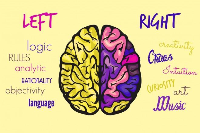 Melyik agyféltekéd a domináns? Teszteld!