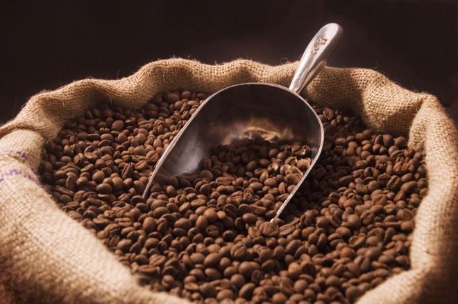 Nagy a baj! Eltűnhet a kávé a Földről!