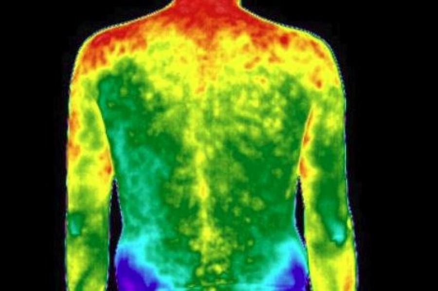 Az emberi test hőtérképe: minden érzelem megjelenik benne!