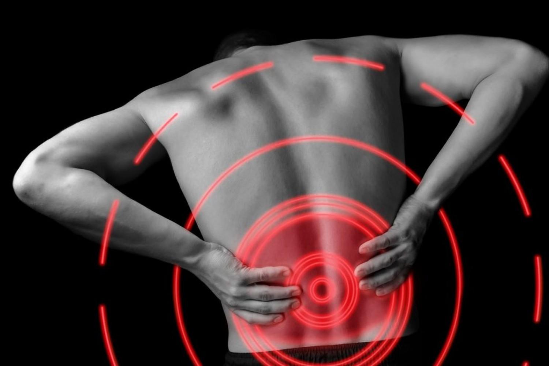 Nézd meg az ábrán, mi okozhatja a hátfájásodat! Lehet más szerv az érintett!
