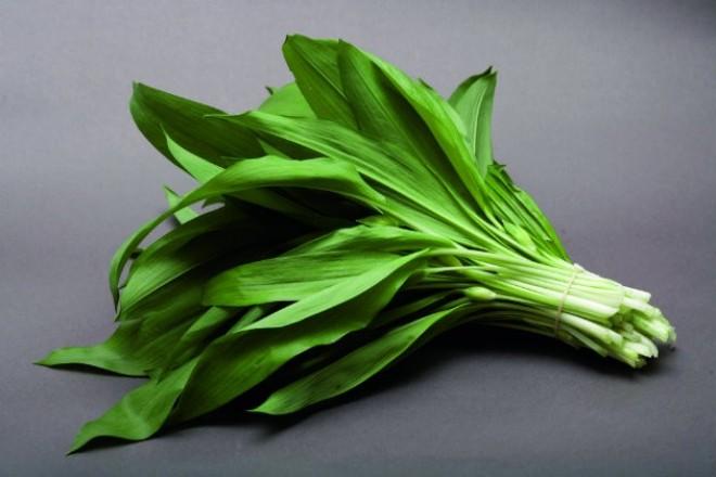 Rágcsáld ezt a vadon termő növényt és megtisztítja a májadat!
