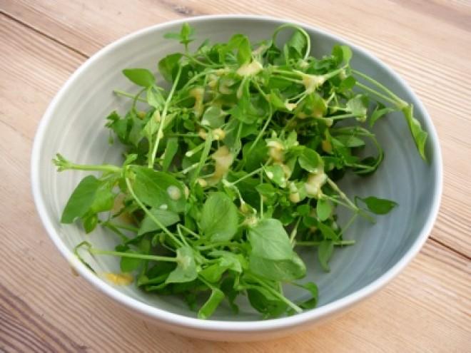 Ez a növény két hét alatt helyreállítja a koleszterinszintedet, és még fogyhatsz is tőle!