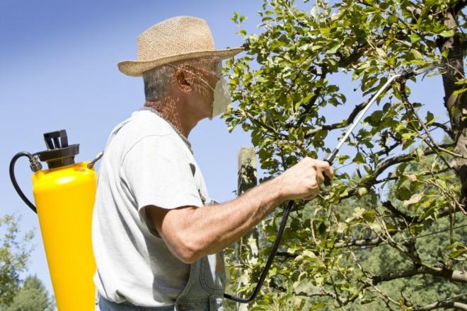 Kerttulajdonosok, gazdálkodók figyelem! Szigorodnak a permetezés szabályai!