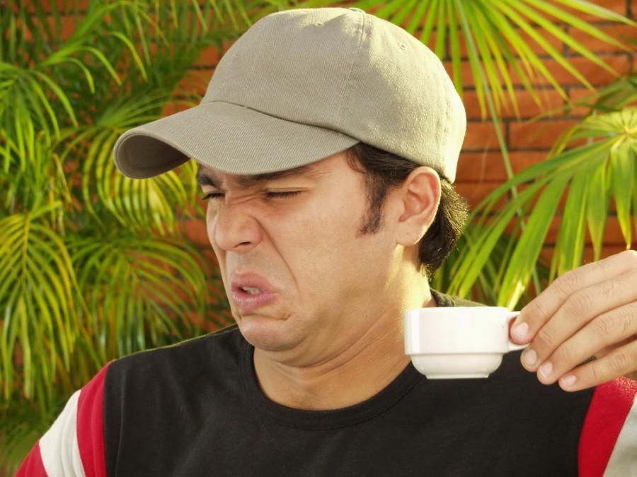 Ezt nem biztos hogy meginnád! A világ legdrágább kávéja macskaürülékből készül.