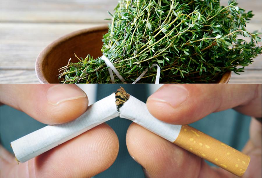 Végleg letettem a cigit egyetlen gyógynövény segítségével