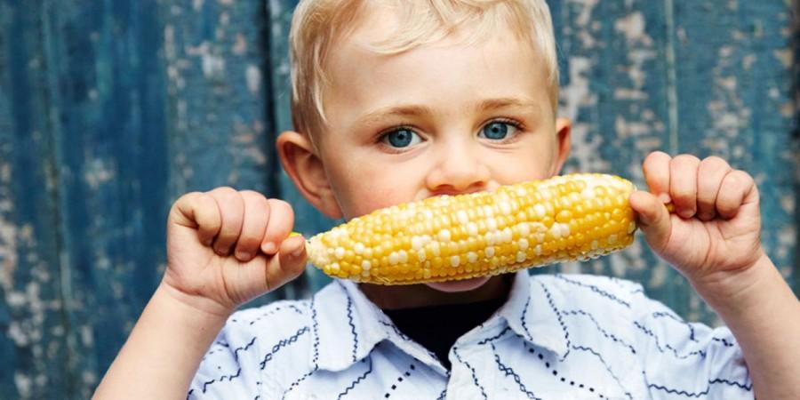 Te elhiszed, hogy az a kukorica, ami rovarölő szert termel, az emberi szervezetre semmilyen hatással nincs?