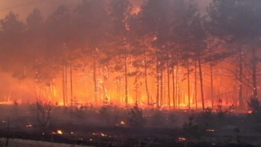 Nagy a baj! Nem tudják megfékezni a csernobili zónában keletkezett tüzet, Kijev felé tart a füst!