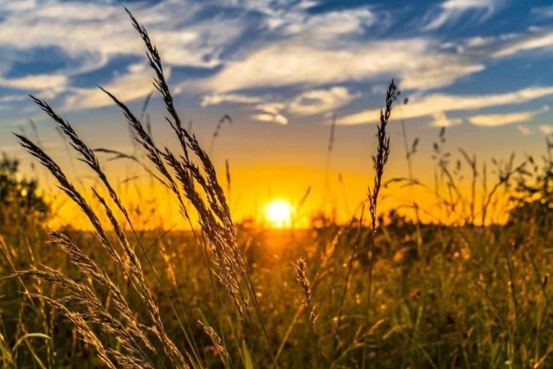 Ötven nappal hosszabb a nyár Magyarországon mint a hetvenes években volt!
