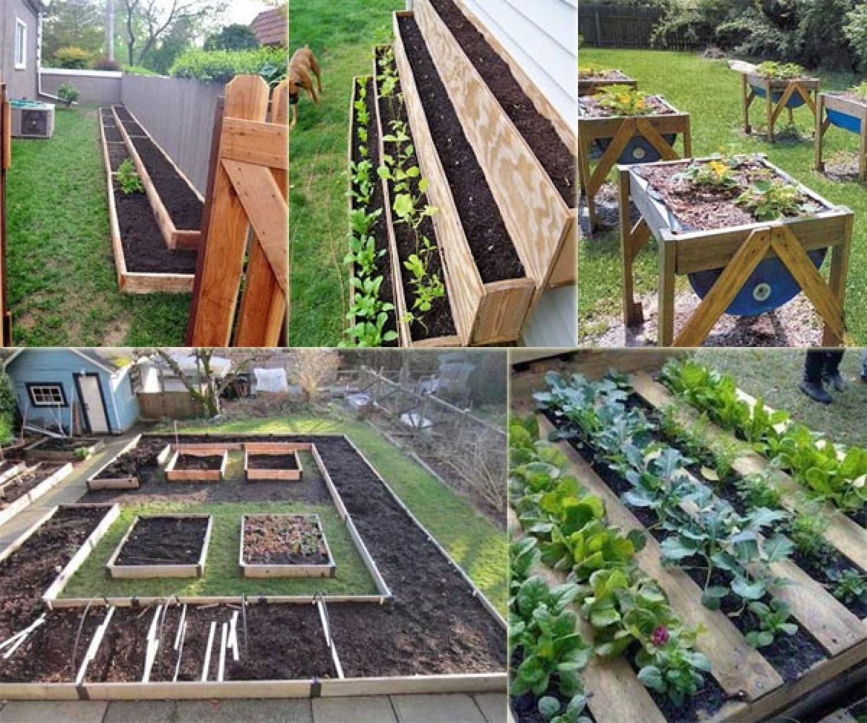 Remek ötletek kisméretű zöldséges kerthez