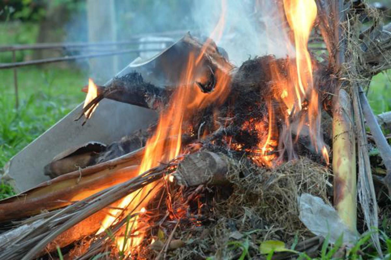 Nyáron elfogadták a törvényt: 2021-től az egész országban tilos az avarégetés