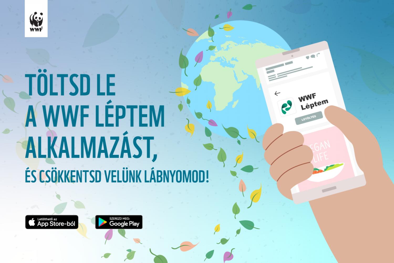 Magyar mobilalkalmazás segít a túlfogyasztás mérséklésében
