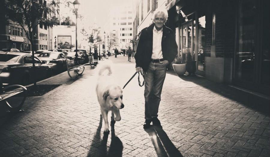 Egy férfi meg a kutyája sétált az úton. A férfi éppen a tájat élvezte, mikor ráébredt, hogy ő már halott…
